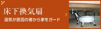 4ren1_banner
