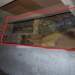 浴室(シロアリ被害痕跡)